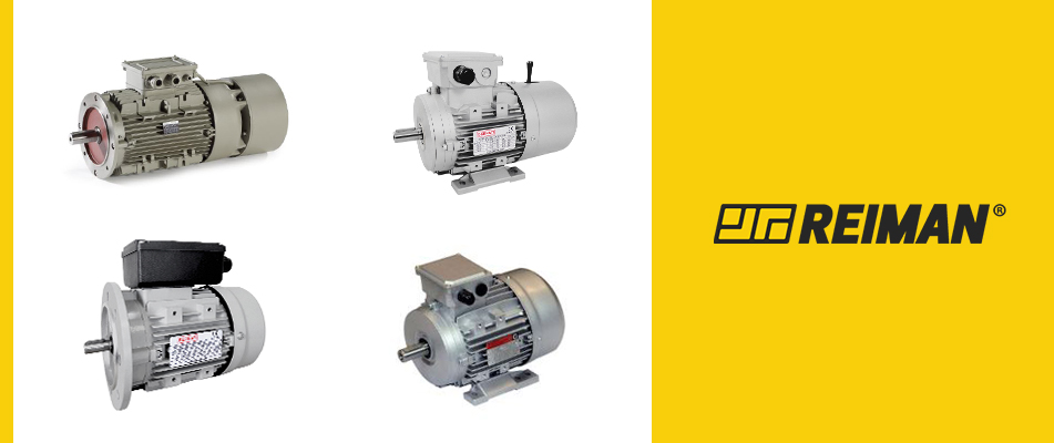 What are the most common types of electric motors?