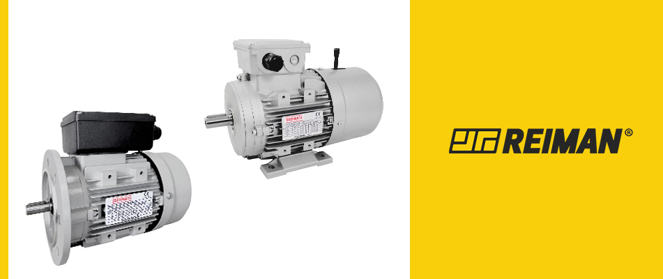 Wich motor is mostly used in industry?