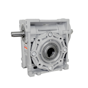 BGSB Worm gearboxes with double input shaft