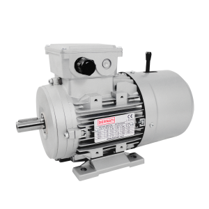 Three Phase DC brake IEC Electric Motors - BCL Series