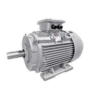 Premium IE3 Three Phase cast iron frame IEC Motors - BCT Series