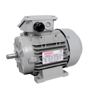 Premium IE3 Three Phase aluminium frame IEC Electric Motors - BMT Series
